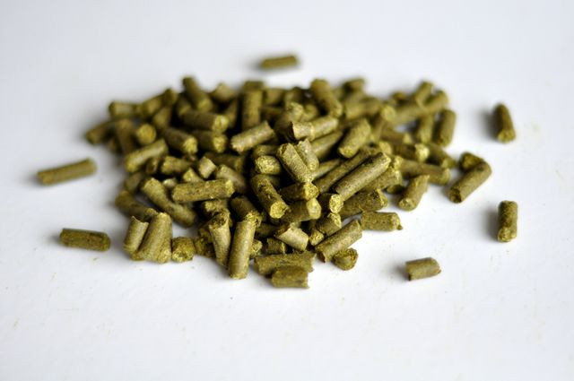 Strisselspalt, France, Pellet - Pound