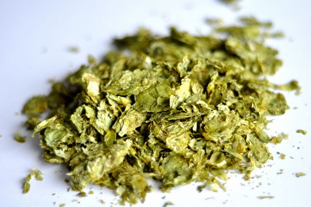 Northern Brewer, Germany, Whole Leaf